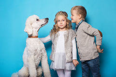 Free Little Princess And Handsome Boy With Royal Poodle. Love. Friendship. Family. Studio Portrait Over Blue Background Royalty Free Stock Photos - 88782488