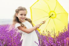 Little princess girl in lavender field with yellow royalty free stock images