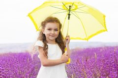 Little princess girl in lavender field with yellow royalty free stock photo