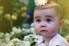 Little princess looks at the sky Royalty Free Stock Images