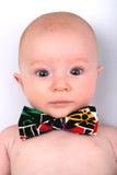 Little Professor. Little Box in Tux Tie Royalty Free Stock Image