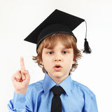 Little professor in academic hat on white background Royalty Free Stock Image