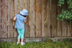 Little prying kid sparkles from the hole in the fence in the world outside its backyard. Wooden background. Free space stock photography