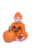 Little Pumpkin Royalty Free Stock Photo