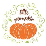 Little pumpkin. Baby shower hand drawn design template with green cute ornament. Vector typography banner with text Little pumpkin. Romantic baby shower hand Stock Photo