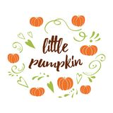 Little pumpkin - baby shower hand drawn fall design with green cute ornament. Vector typography banner with text Little pumpkin. Romantic baby shower hand drawn Stock Photos