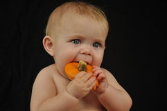 Little Pumpkin Eater Stock Photo