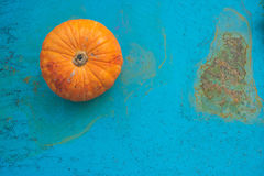 Little pumpkin on an old blue background royalty free stock photo