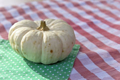 Little Pumpkin Stock Images