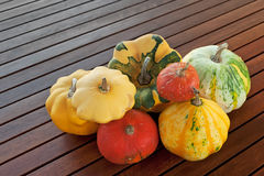 Little pumpkins. Several types of little pumpkins on a table Royalty Free Stock Images