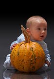 Little pumpkins Stock Photo