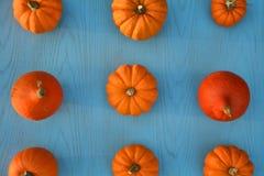 Little pumpkins on blue background Stock Images