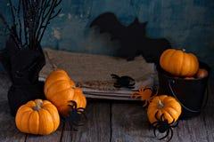 Little pumpkins on Halloween table Stock Photos
