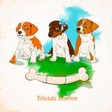 Little puppies. stock illustration