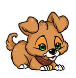 Little puppy cartoon illustration Stock Photography