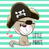 Little Puppy Pirate Royalty Free Stock Photos