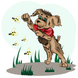Little puppy playing with bees on lawn. Vector illustration of a little puppy playing with bees on the lawn stock illustration