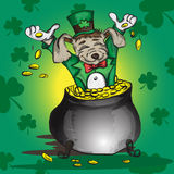 Little puppy sitting in a pot with gold coins Stock Images
