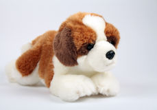 Little puppy toy Stock Photos