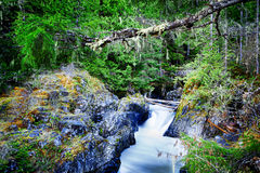 Little Qualicum Falls Provincial Park Royalty Free Stock Image