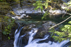 Little Qualicum Falls Provincial Park, BC, Canada Stock Image