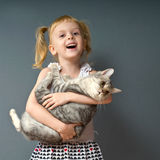 A little queer girl. A girl with blond hair is holding a cat and laughs Stock Images