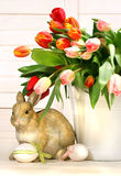 Little rabbit behind white container Royalty Free Stock Photo