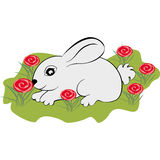 Little rabbit on the lawn. Of flowers royalty free illustration