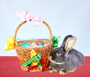 Little rabbit lies near a basket with Easter eggs decorated with colored ribbons Stock Photos