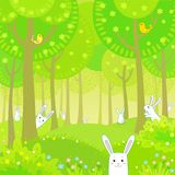 Little rabbits in the summer wood Stock Photo