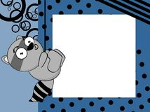 Little Raccoon emotion frame background Royalty Free Stock Photos