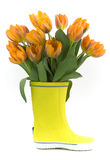 Little rain boot and fresh tulips Royalty Free Stock Image