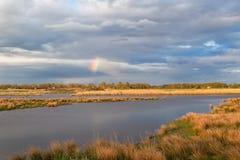 Little rainbow over swamp, Netherlands Stock Photos