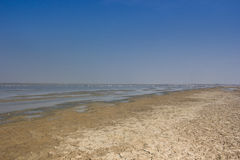 Little Rann (desert) of Kutch / LRK Royalty Free Stock Photos