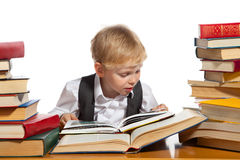 Little reader Stock Images