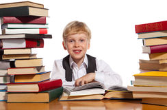 Little reader Royalty Free Stock Photo