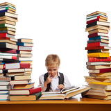 Little reader Royalty Free Stock Images