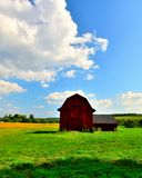 Little red barn in a field of green and golden grass. Blue azure sunny skies with fluffy cirrus clouds above an old red New England style barn. Roof is black Royalty Free Stock Images