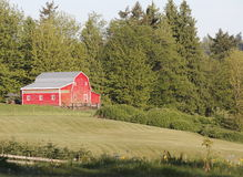 Little Red Barn Stock Photography