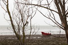 A little red boat on a lake shore near some skeletal tree, on a. Moody day Stock Photo