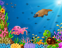 Little red devil wavingCartoon tropical animal with beautiful underwater world. Illustration of Cartoon tropical animal with beautiful underwater world Stock Image