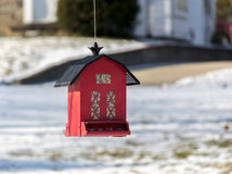 Little red feeder. Dangling from a tree in the quiet town of shelby Stock Photos