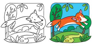 Little red fox coloring book Stock Photos