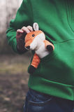 Little red fox Royalty Free Stock Image