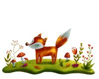 Little red fox Stock Photos