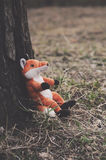 Little red fox Stock Images