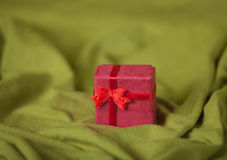 Little red girt Royalty Free Stock Images