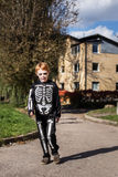 Little red haired boy wearing halloween skeleton costume Stock Photos