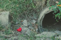 Little red heart pillow falls in the culvert rice field royalty free stock images