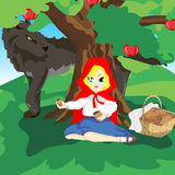 Little Red Hood and gray wolf Royalty Free Stock Images